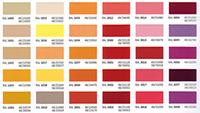 Custom Color Chart
